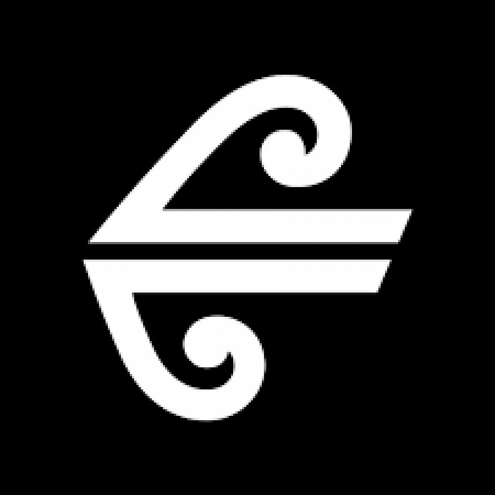 新西兰航空 Air NZ